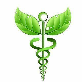 Cabinet Médecines Alternatives - Naturopathe Thérapeute - Formatrice | Noyal-Châtillon, 35000 Rennes | +33 6 99 52 55 68
