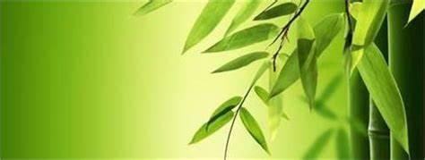 Bronwen Cope- Adelaide Naturopath *Natural Health*Nutrition*Diet*Vitamins*   252 Kensington Road, Adelaide, South Australia 5068   +61 8 8364 5044
