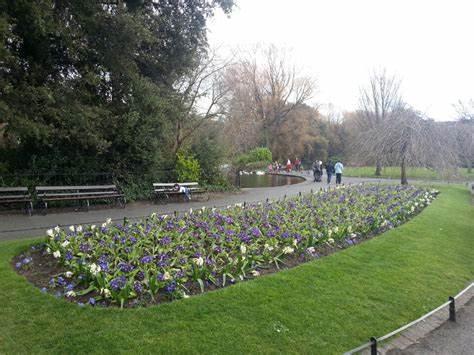 St. Stephens Green Luas | St Stephens Green, Dublin, 2 | +353 1800 300 604