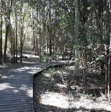Hunter Valley Walk And Talk Therapy   Nature is the address, Maitland, New South Wales 2320   +61 491 087 355