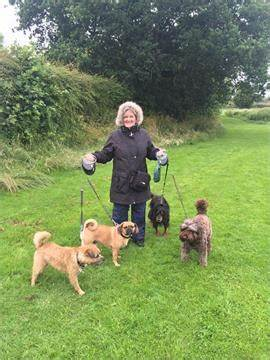 Animates Professional Pet Sitting & Dog Walking Service | 2 Howard Road, Chester CH4 8UF | +44 1244 681028