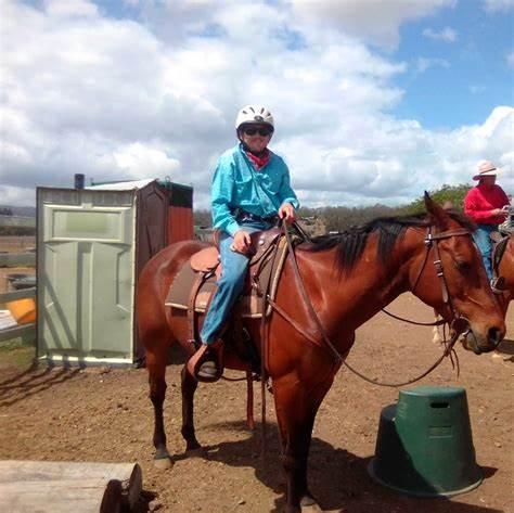 Izaac Brindley Association Inc.   307 SILVERLEAVES ROAD, Mount Beppo, Queensland 4313   +61 423 086 100