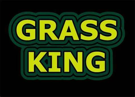 Grass King Landscaping & Lawnmowing   191 Anderson Drive, Beresfield, New South Wales 2322   +61 423 677 145