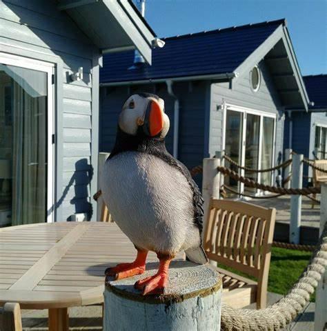 Puffin Lodge Filey - pet And smoke free holiday home at Filey Bay | 24 Trinity Way, Moor Road, Filey YO14 9GL | +44 7901 666866