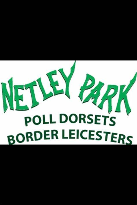 Netley Park Poll Dorset & Border Leicester Studs | 76 BAINGER ROAD, Cannawigara, South Australia 5268 | +61 418 724 189