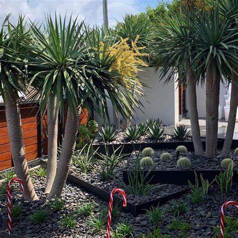 Octopus Garden Design | 498 The Esplanade, Warners Bay, New South Wales 2282 | +61 418 170 090
