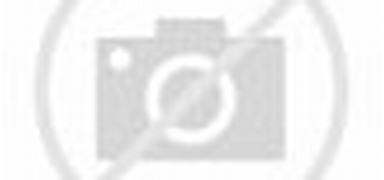 Hostal Conde David