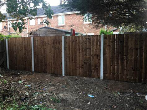 The Backyard Barbers, Tree Surgeons & Fencing. | Bessemer Court, Middlesbrough T S67 | +44 7585 898932