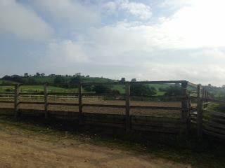 Bridleways Equestrian Riding School & Livery   Swindon Bank, Harewood HG3 1JB   +44 7738 227077