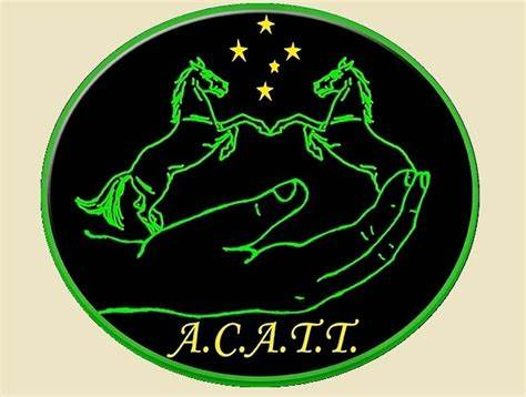 ACATT Australias Equine Therapy College & Equine Movement Clinic | 111 SPILLERS Road, Macclesfield, Victoria 3782 | +61 3 5968 9788