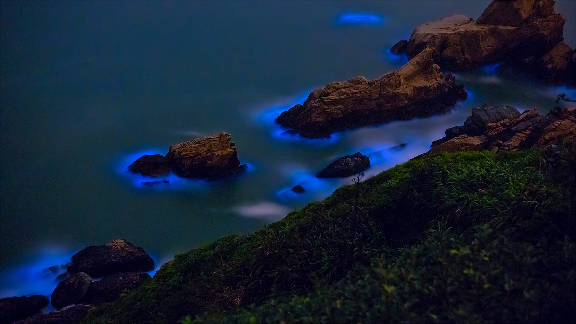 Bioluminescent algae along the shores of the Matsu Islands off the coast of Taiwan (© Wan Ru Chen/Getty Images)(Bing United States)