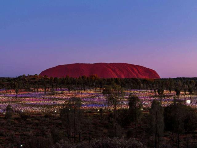 'Field of Light' by artist Bruce Munro at Uluru, Australia (© Sheralee Stoll/Alamy)