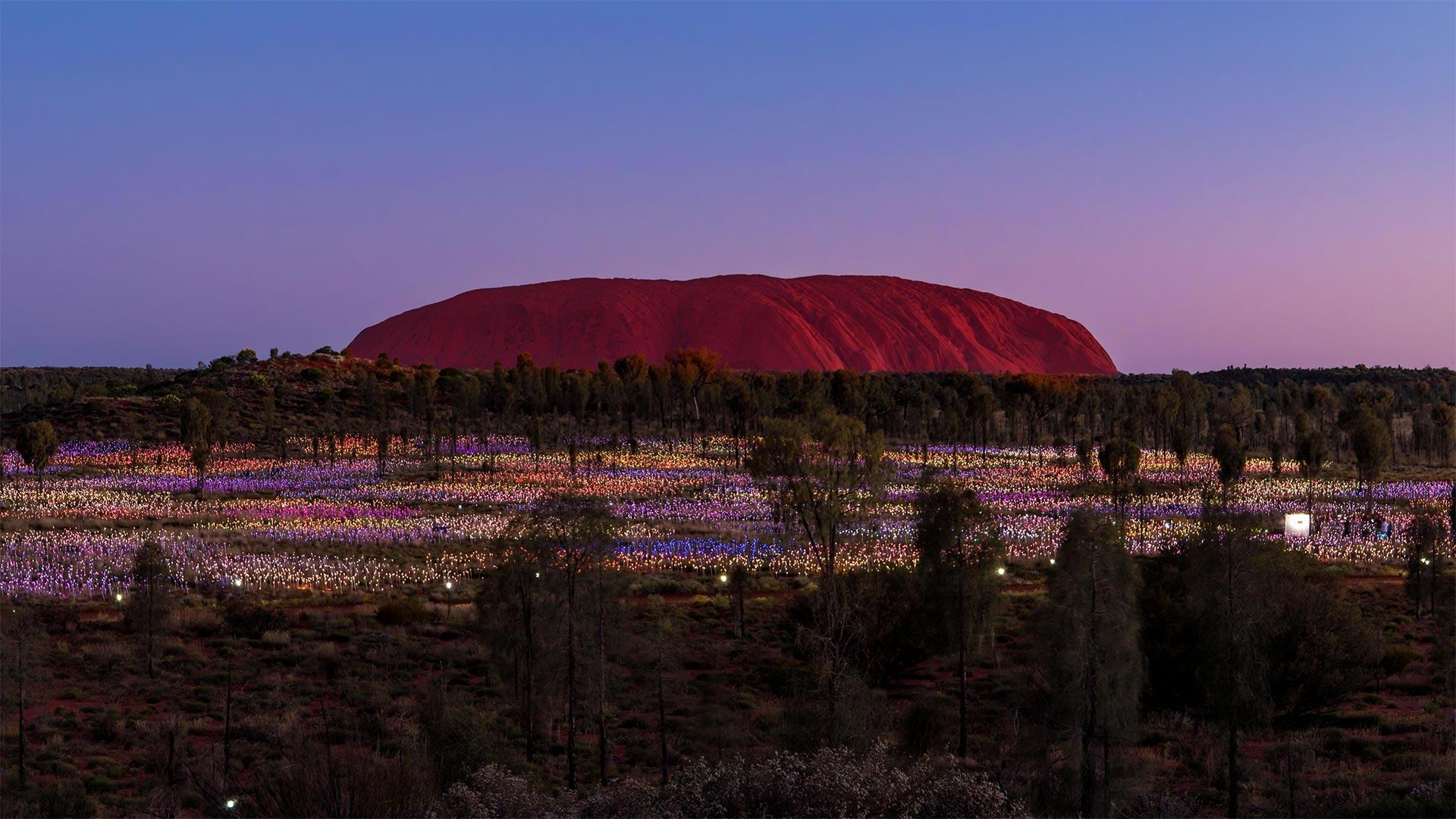 「ブルース・マンローの作品『フィールドオブライト』」オーストラリア, ウルル (© kokouu/Getty Images)