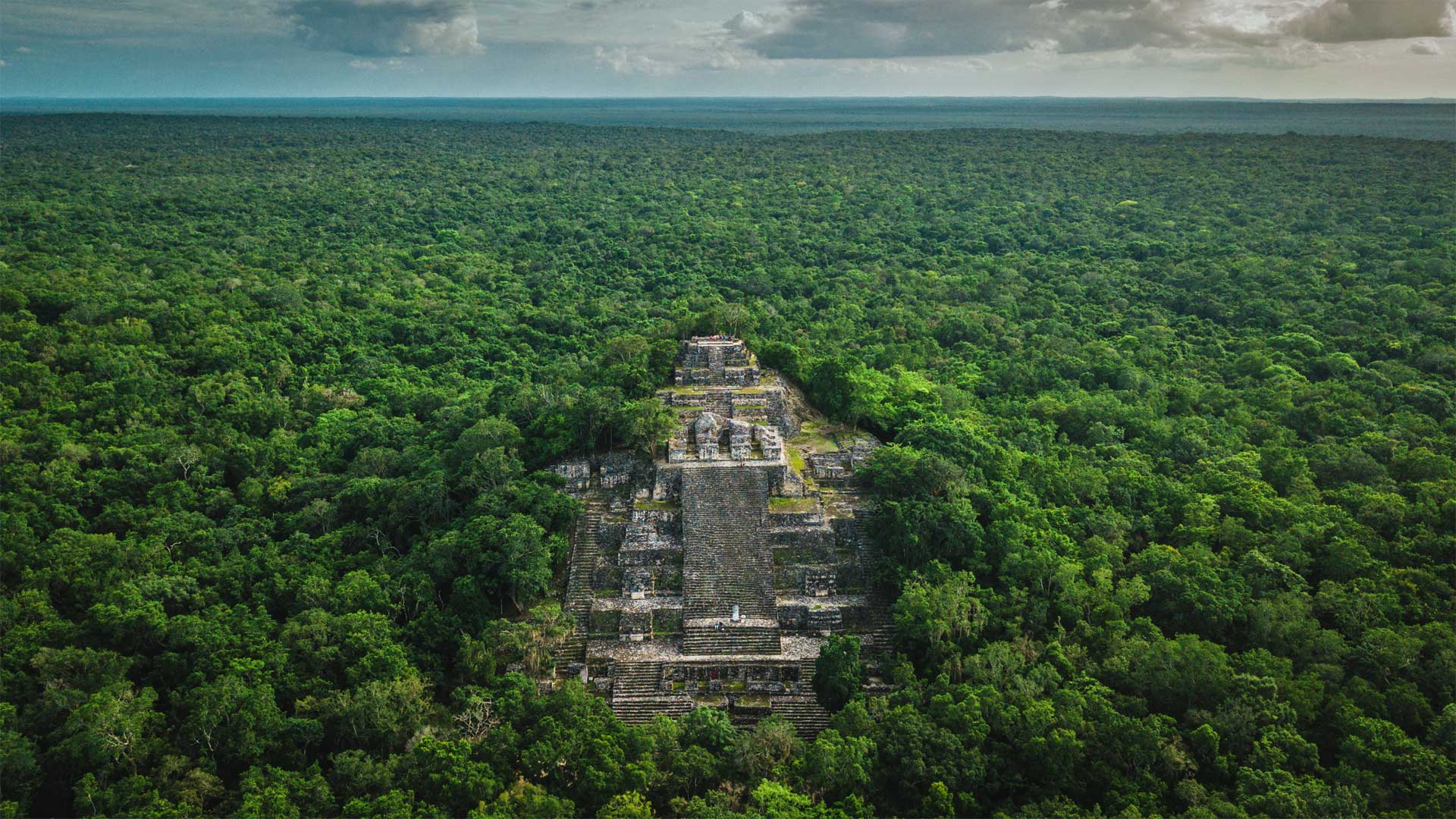 Ruins of the ancient Maya city of Calakmul surrounded by jungle in Campeche, Mexico (© Alfredo Matus/Shutterstock)(Bing United States)