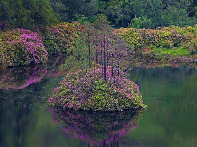 Small loch in Glen Etive, Scotland (© Oliver Hellowell/Minden Pictures)