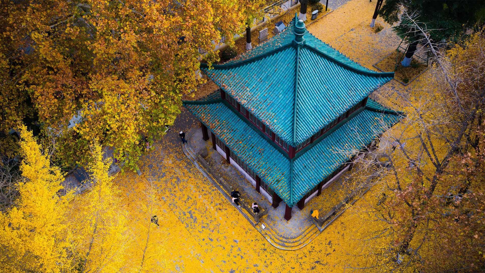 「秋の玄武湖公園」中国, 江蘇省 (© SIPA Asia/ZUMA Wire/Alamy)
