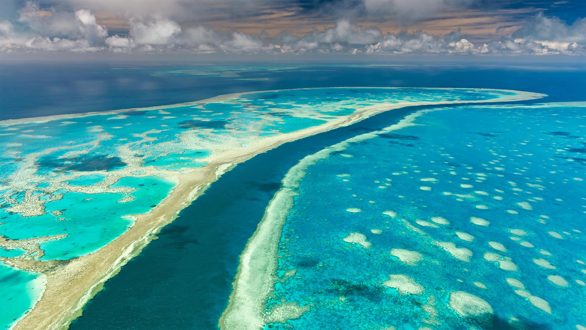 Great Barrier Reef, Queensland, Australia (© AWL Images/Danita Delimont)(Bing United States)