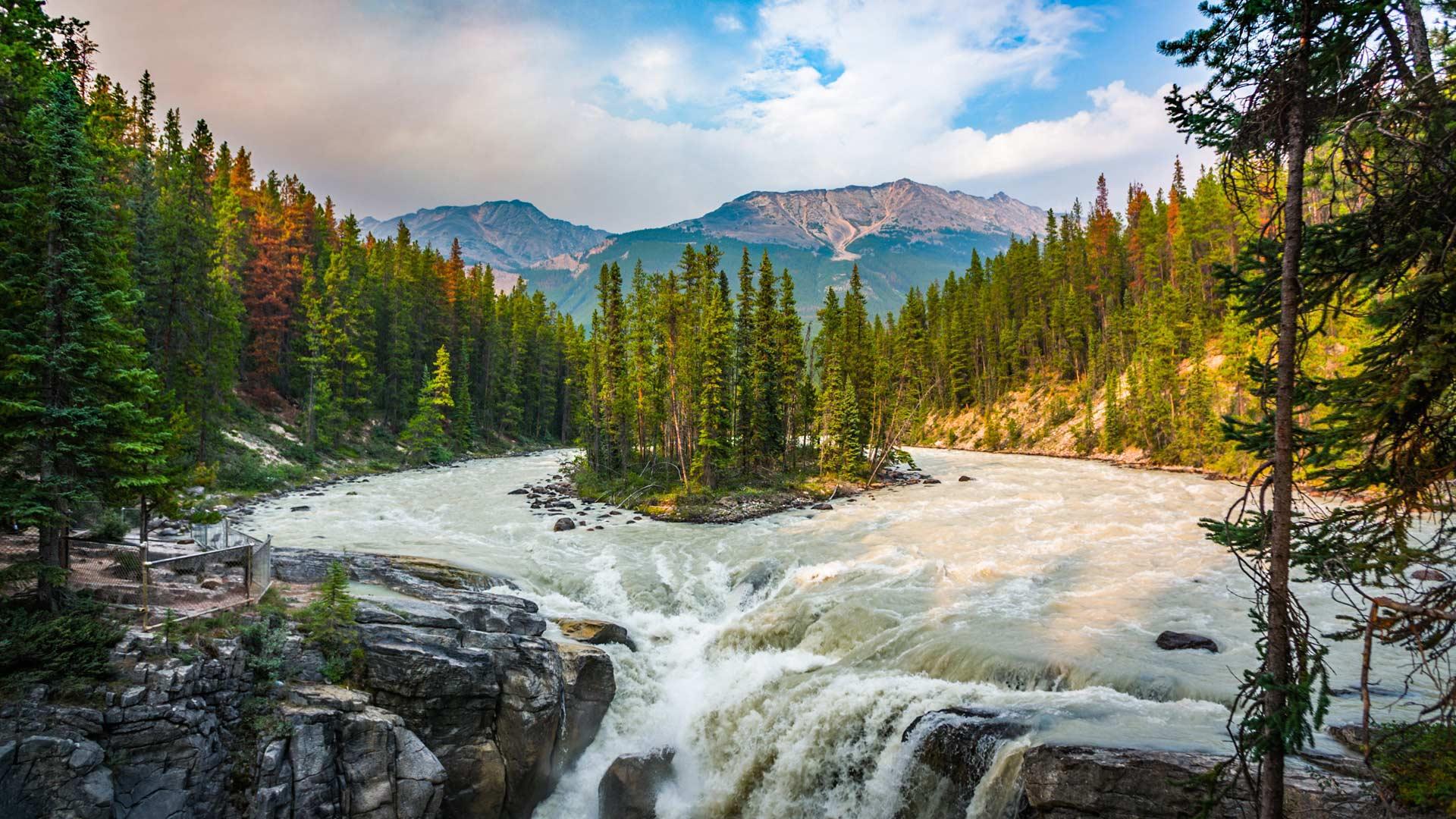 Sunwapta Falls in Jasper National Park, Canada (© Schroptschop/Getty Images)(Bing United States)