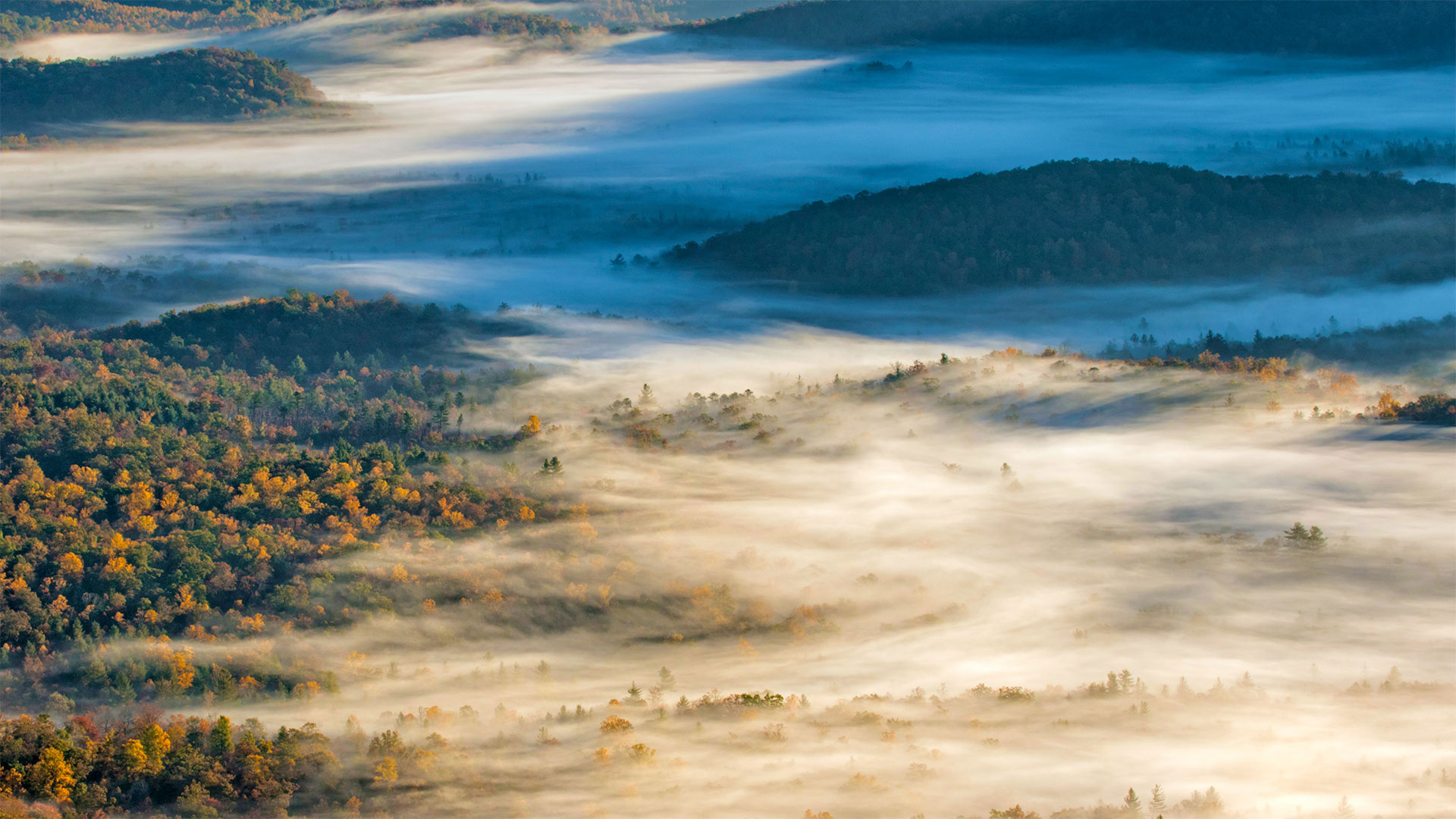 View of Pisgah National Forest near Brevard, North Carolina (© Adam Jones/Danita Delimont)(Bing United States)