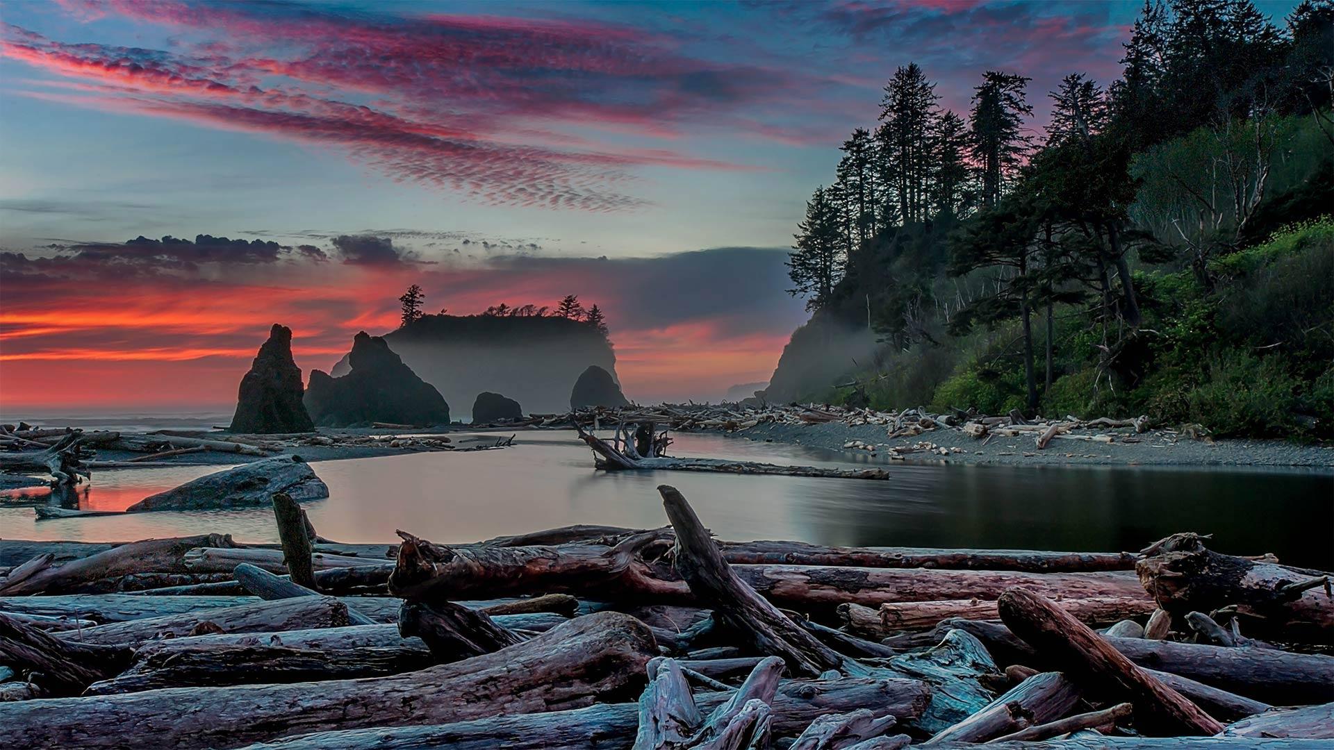 「ルビービーチの夕暮れ」米国ワシントン州, オリンピック国立公園 (© Adam Mowery/Tandem Stills + Motion)