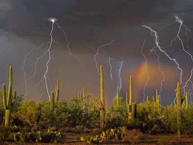 Lightning storm in the Tortolita Mountain foothills, north of Tucson, Arizona, in the Sonoran Desert (© Jack Dykinga/Minden Pictures)