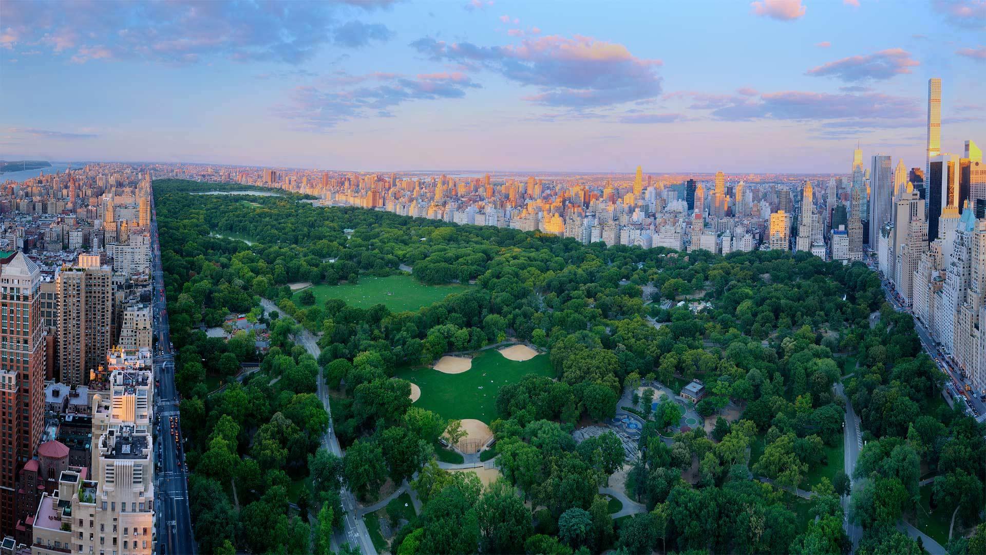 「セントラル・パーク」米国ニューヨーク州, ニューヨーク市  (© Tony Shi Photography/Getty Images)