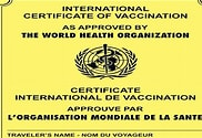 Image result for International Health Yellow Card. Size: 146 x 100. Source: guardian.ng