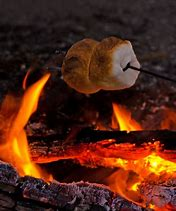 Image result for smore night