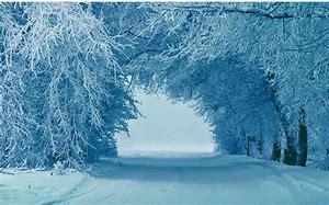 Rezultat imagine pentru iarna