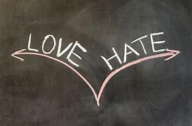 Image result for love hate relationship