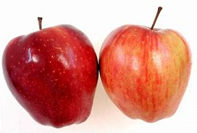 Image result for comparing two apples