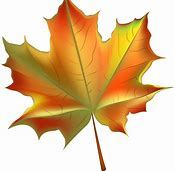 Image result for fall clip art free images