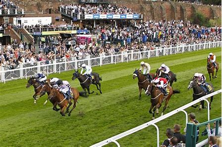 Image result for chester races images