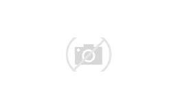 Image result for zombie deer disease