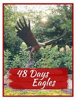 Image result for 48 Days Eagles. Size: 121 x 160. Source: store.48days.com