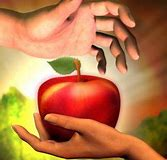 Image result for the apple adam and eve