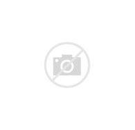 ウインナーコーヒー に対する画像結果