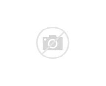 Image result for they lived and reigned with christ for 1000 years