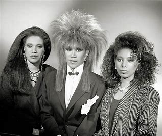 Image result for pics of pointer sisters