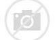 Image result for custard time northville