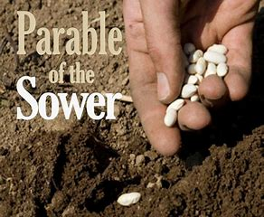 Image result for man sows seed in his field God