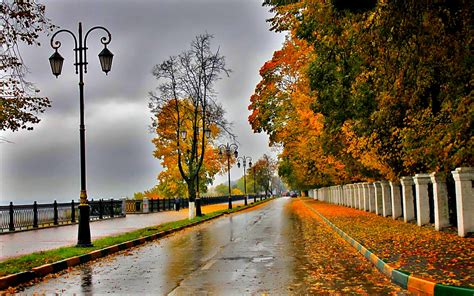 Image result for pic of rainy fall day
