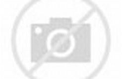 Image result for Army Intelligence. Size: 246 x 160. Source: www.army.mil