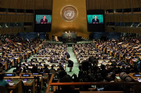 Image result for the united nations