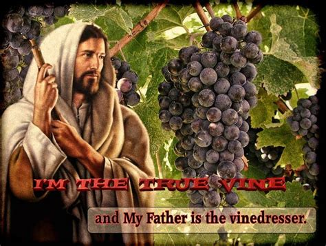 Image result for jesus the branch
