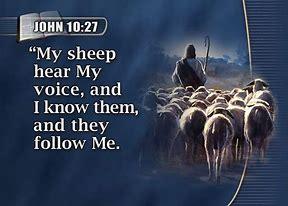 Image result for John 10:27