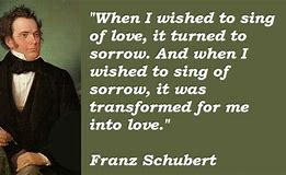 Image result for Franz Schubert Quotes