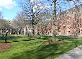 Image result for images yale old campus