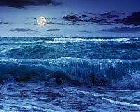 Image result for the tide