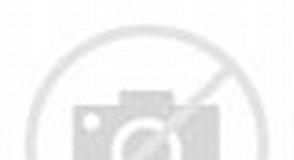 Tamaño de Resultado de imágenes de Pueblo de Encinarejo-agricultura Mujer Ecológica Canaria.: 294 x 160. Fuente: www.eldiario.es